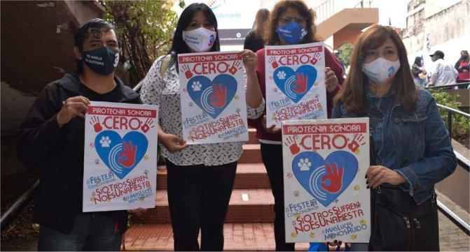 Jujuy: sancionan una ley que prohíbe el uso de pirotecnia sonora
