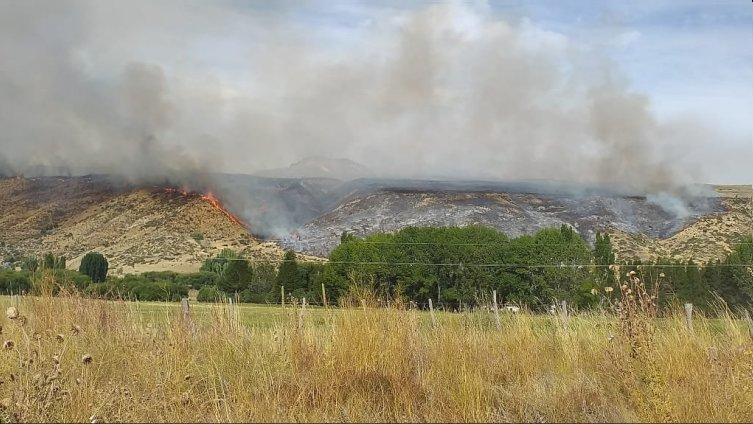 Incendios forestales: Buenos Aires, Río Negro y Corrientes reportan focos activos